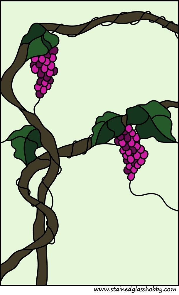 grapes vine wide window panel